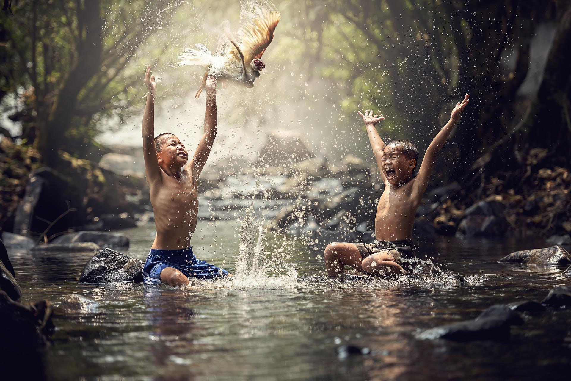 Ce înseamnă libertatea în mediul Montessori?